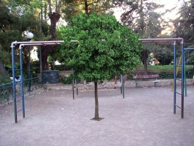 Playground II - Dimitra Chanioti